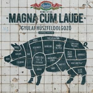 Magna Cum Laude - Gyulai Húszfeldolgozó